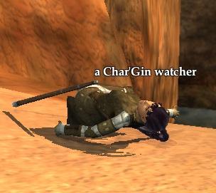 A Char'Gin watcher (NPC)