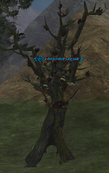 A desecrated vale oak