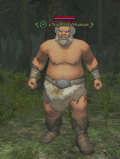 A Nightfall Shaman