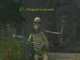 A Dragoon lieutenant