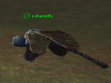 A draconfly