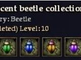 Iridescent beetle collection