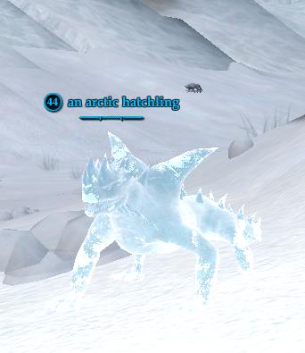 An arctic hatchling