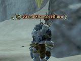 Grand Shaman Ollurn