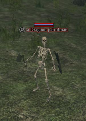 A Dragoon patrolman