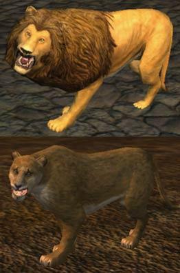Race lion.jpg