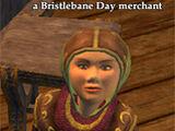 Bristlebane Day Merchant Items