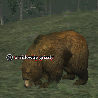 A willowtip grizzly