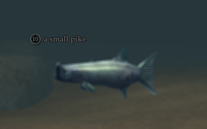 A small pike