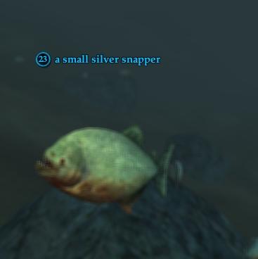 A small silver snapper
