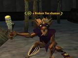 A Broken Toe shaman (Runnyeye: The Gathering)