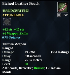 Etched Leather Pouch (Level 30) (Crafted)