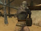 Overseer Maulic