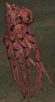 Race octopus.jpg