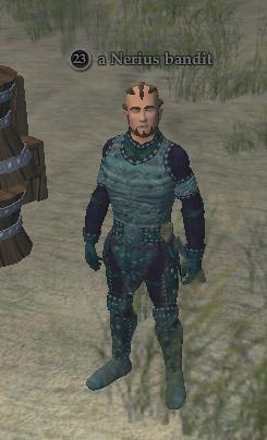 A Nerius bandit