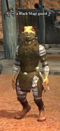 A Black Magi guard.png