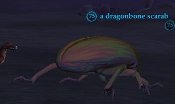 A dragonbone scarab