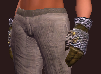Arcane Sage's Gloves (Equipped).png
