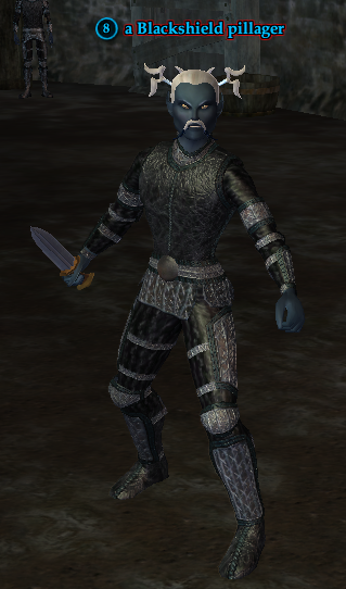 A Blackshield pillager.png