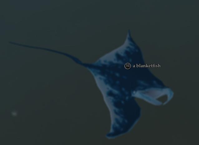 A blanketfish.jpg