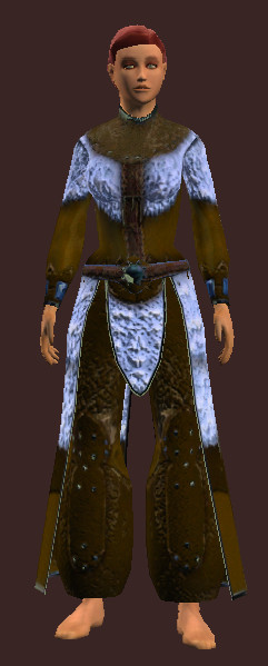 Arctic Frostwind Champion's Robe eq.jpg