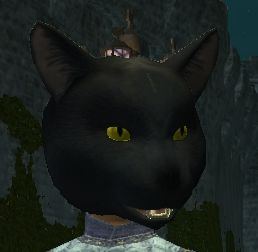 A cat mask (Visible).jpg