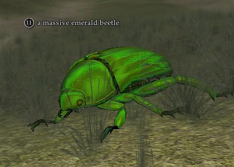 A massive emerald beetle