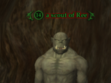 A scout of Ree