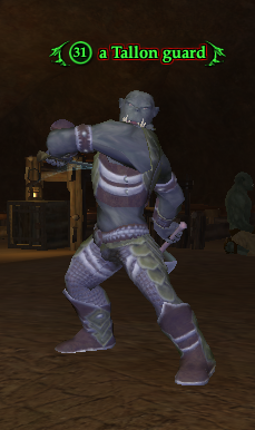 A Tallon guard