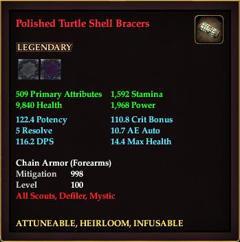 Polished Turtle Shell Bracers