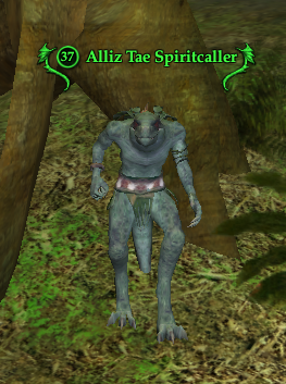 Alliz Tae Spiritcaller