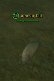 A razor tail