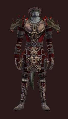 Bonded Drakizite (Armor Set)