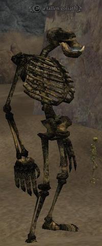 A fallen goliath