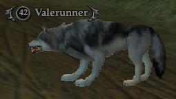Valerunner