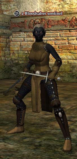 A Bloodsaber sentinel