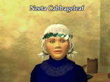 Neeta Cabbageleaf