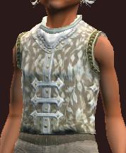 Arcane Sage's Vest (Equipped).png