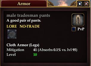 Male tradesman pants