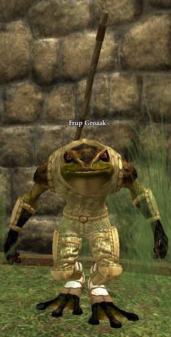 Frup Groaak