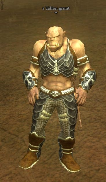 A Tallon grunt (Zek, the Orcish Wastes)
