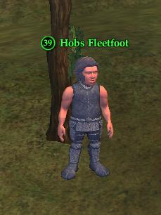 Hobs Fleetfoot