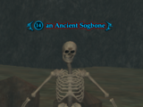 An Ancient Sogbone