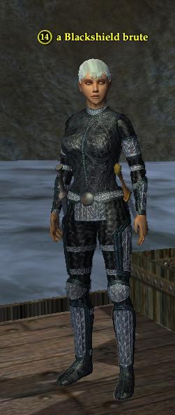 A Blackshield brute (Commonlands) (human).png