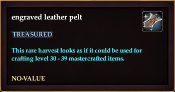 Engraved leather pelt (Version 2)