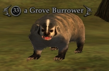 A Grove Burrower