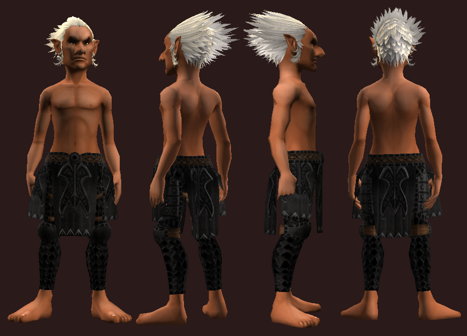 Animist's Chausses of the Citadel (Equipped).png