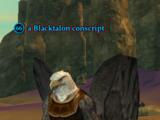A Blacktalon conscript