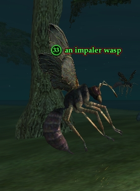 An impaler wasp