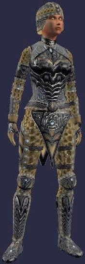 Tomb Raider's Set (Armor Set)